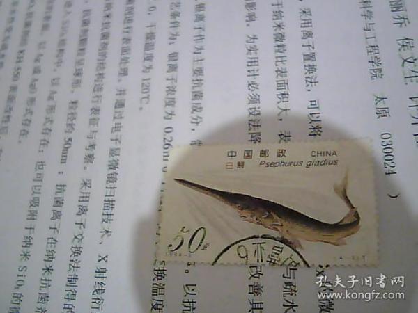 1994-3 白鲟(4-3)T