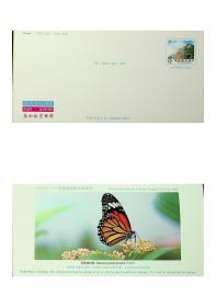 77年版玉山国家公园美加航空邮简 背印黑脉桦斑蝶 新