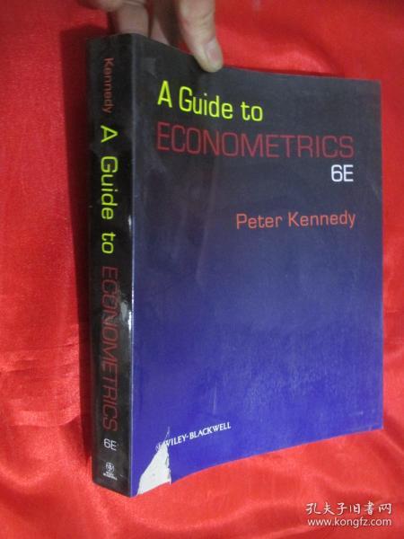 A Guide to Econometrics  (Sixth Edition)  16开