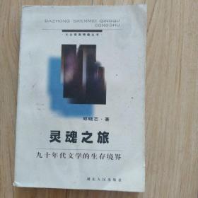 灵魂之旅:九十年代文学的生存境界   包邮挂