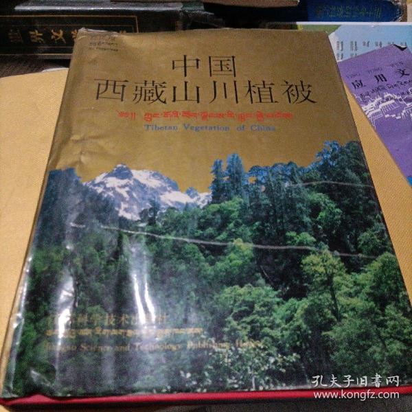 中国西藏山川植被