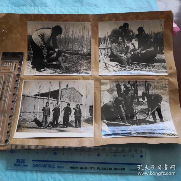 老照片4张合售 如图 tg-120-1上山下乡?知青?