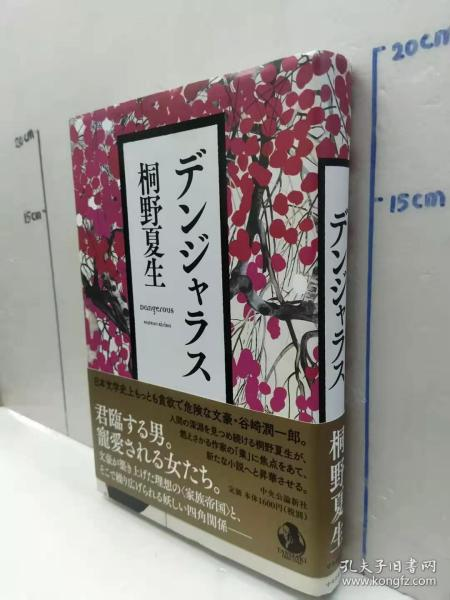 桐野夏生 《デンジャラス》日文原版32开硬精装收藏版小说书 中央公论新社出版
