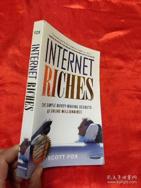 Internet Riches: The Simple Money-Making Secrets of Online Millionaires   (小16开) 【详见图】