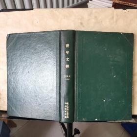 青年文摘 1984年 1~12 总第23~34期(馆藏)