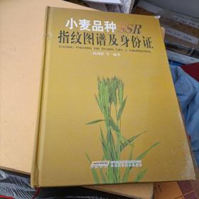 小麦品种指纹图谱及身份证
