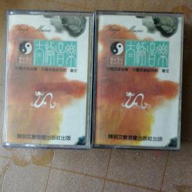 太极音乐录音磁带两盒合售