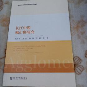 长江中游城市群研究