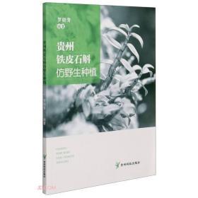 中药材石斛种植技术书籍 贵州铁皮石斛仿野生种植