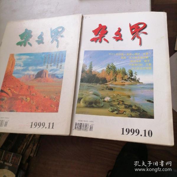 杂文界杂志1999一10,11