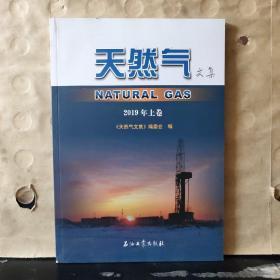 天然气文集 2019年上卷