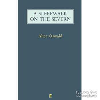 A Sleepwalk on the Severn
