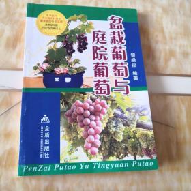 盆栽葡萄与庭院葡萄