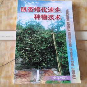 银杏矮化速生种植技术