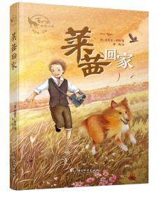 DF百年经典动物小说:莱茜回家(儿童长篇小说)