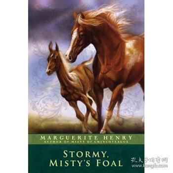 Stormy,Misty'sFoal
