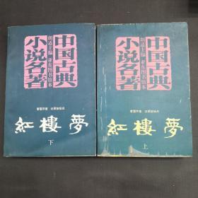 中国古典小说名著 红楼梦 上下