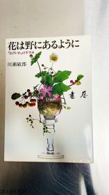 花は野にあるように―「なげいれ」のすすめ  川濑敏郎插花 1984年 淡交社