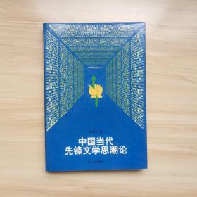 跨世纪文论丛书:中国当代先锋文学思潮论   张清华著