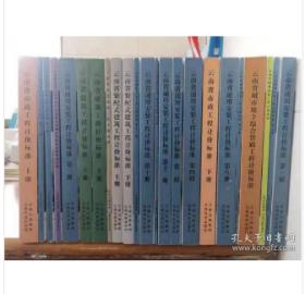 云南省建设工程造价计价标准(2020版) 云南省城市地下综合管廊工程计价标准