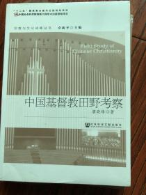 【正版现货,全新未拆】中国基督教田野考察(基督教与文化战略丛书)