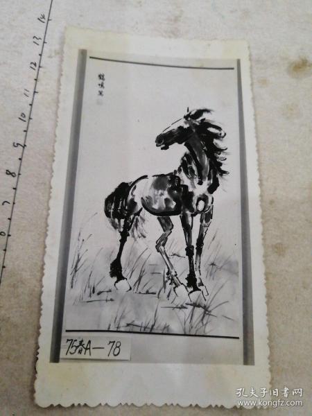 """绘画作品""""马""""照——(时红明,字:鹤鸣,号:鹤鸣堂主,莲花斋主,1962年8月1日出生于山东省威海市文登区莲花城。)"""
