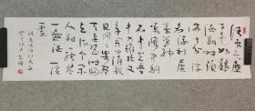 书法草书软片 苏东坡词行香子 原稿手绘真迹