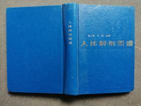 人体解剖图谱(修订本)