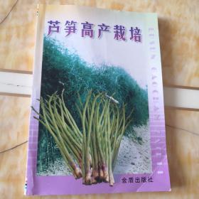 芦笋高产栽培