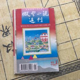 微型小说选刊1995.1