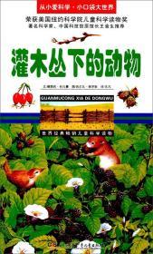 灌木丛下的动物/从小爱科学·小口袋大世界