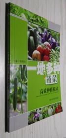 一地多种蔬菜高效种植模式 姚明华 正版新书