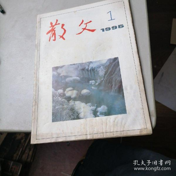 散文杂志1995一1