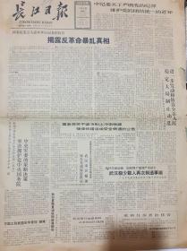 长江日报 1989 6 8
