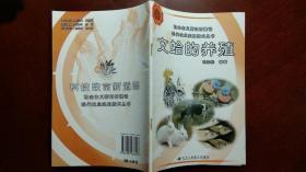 文蛤的养殖
