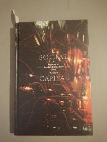 社会资本。关于社会结构与行动的理论/(美)林南著,张磊泽。一北京社会科学文献出版社。2020年7月,2021年3月重印。