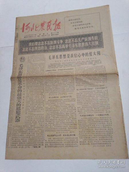 """""""文革""""版本.河北农民报:1966年6月15日8开共4版"""