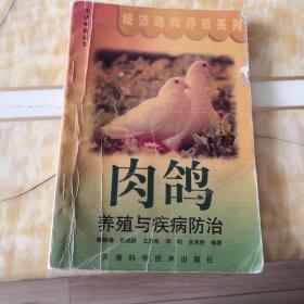 肉鸽养殖与疾病防治