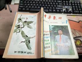 中华气功1995年1-6期合订本 有订孔N2290