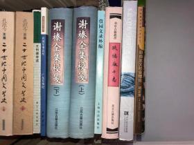 二十世纪中国文学史 上下 2 册全 没有写画