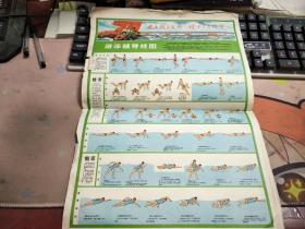 游泳辅导挂图【两张合售】N2263