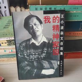 我的精神家�@:王小波�s文不过现在自�x集