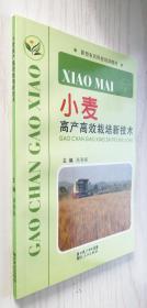 小麦高产高效栽培新技术 高春保 正版新书