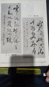 画页(散页印刷品)---书法---行书条幅【费新我】。草书条幅【曹志桂】。隶书条幅【黄养辉】。篆书条幅【丁吉甫】789
