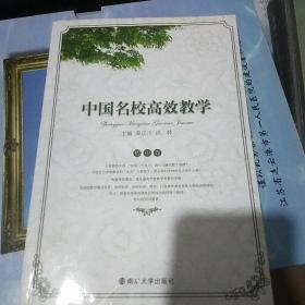 中国名校高效教学·初中卷