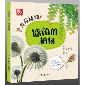 正版图书 发现植物--(彩绘版)墙角的植物 9787558902703包邮 常