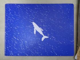 クジラの海  (岩合光昭)
