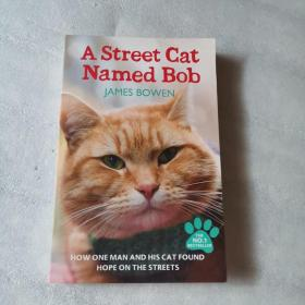 A Street Cat Named Bob:How one man and his cat found hope on the streets