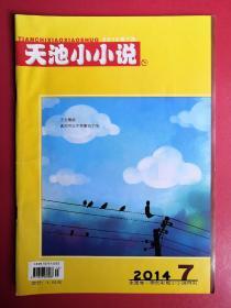 天池小小说2014年第7期