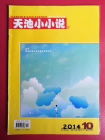天池小小说2014年第10期